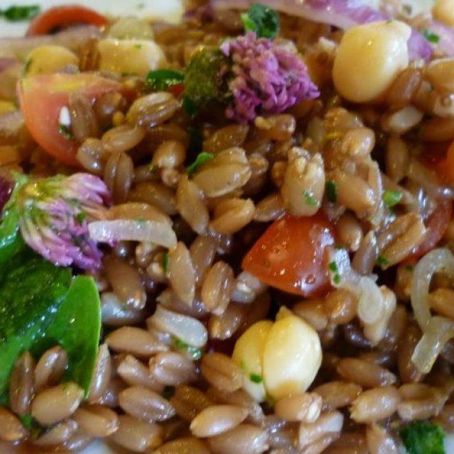 Insalate di legumi e cereali: ed il gusto trionfa a ferragosto